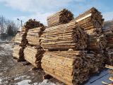 Продам дрова колоті.