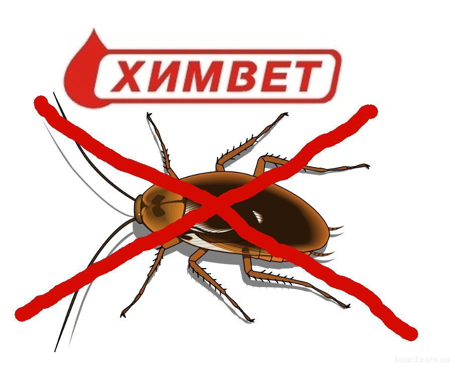 Уничтожение тараканов в Днепропетровске.