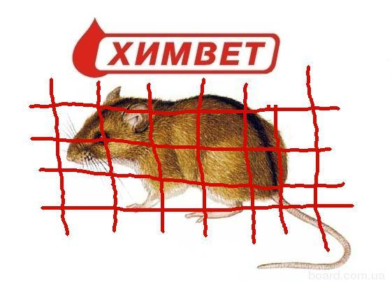 Борьба с мышами и крысами в Днепропетровске.