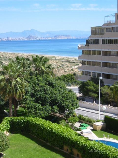 Апартаменты аренда в испании аликанте университет