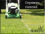Стрижка газона; покос травы