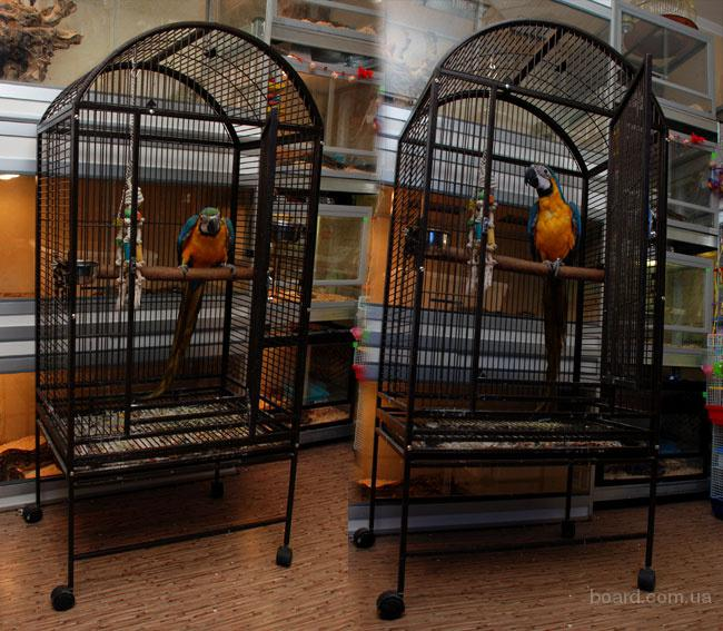 Продам вольер для больших попугаев Жако,не дорого покупали за 18000--продаю за 5000р.клетка в отличном состоянии.