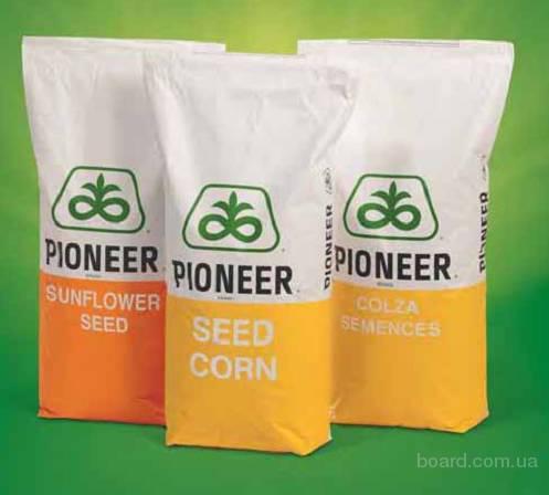 Семена кукурузы Пионер гибрид (Pioneer)