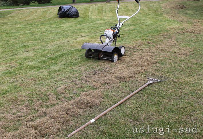 Вычесывание газона, аэрация газона