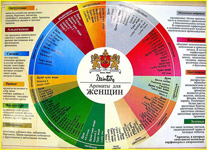 eroticheskie-priklyucheniya-robina-guda