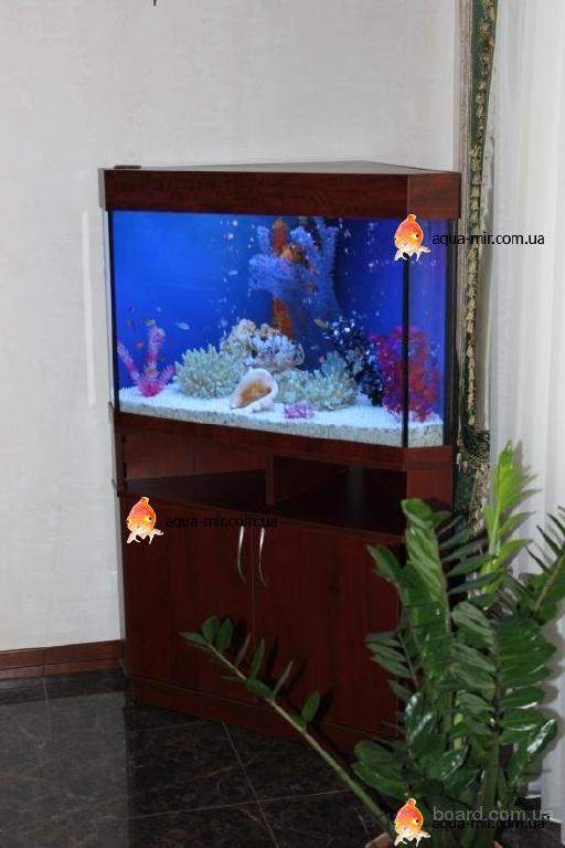 Интерьерные пресноводные и морские аквариумы любой сложности и фо…