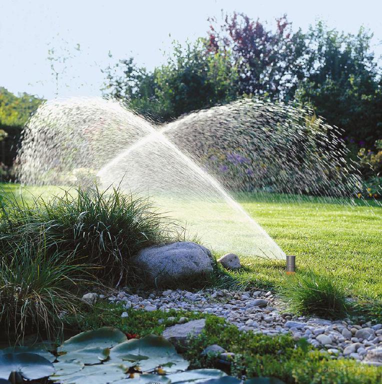 Прежде всего, в отличие от ручного, автополив обеспечивает оптимальное и равномерное поступление воды ко всем...