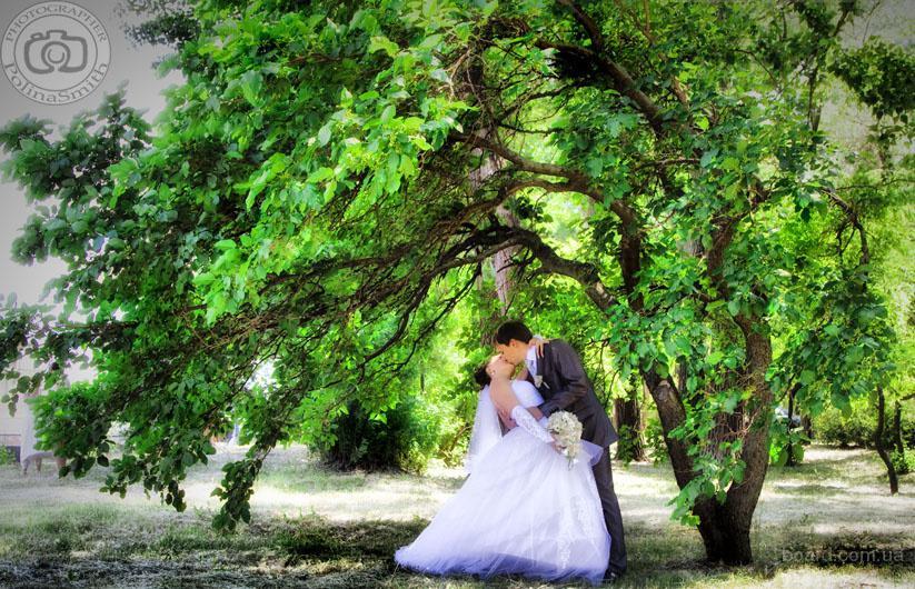 Фотограф, свадебный фотограф