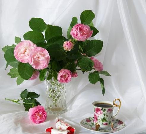 http://img3.board.com.ua/a/2002510343/wm/1-predlagaem-kompozitsii-iz-chajnyih-roz.jpg