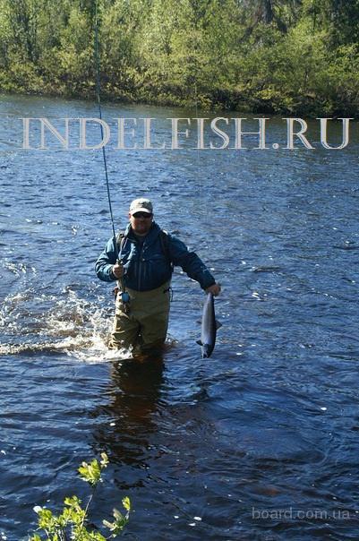 видео. профессиональная рыбалка