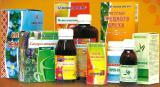 Нетрадиционная медицина – фитотерапия