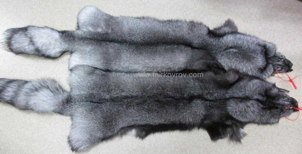 Блюфрост (Песец серебристый), натуральный мех блюфроста
