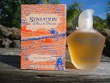 Alain Delon - Sensation (1993) - edt 100ml (tester) - оригинал, раритет!