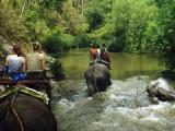 Туры в Тайланд из Киева