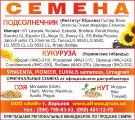 Посевной материал кукурузы Элегия фао-270
