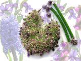 Колье Весна: гиацинт и лесные фиалки
