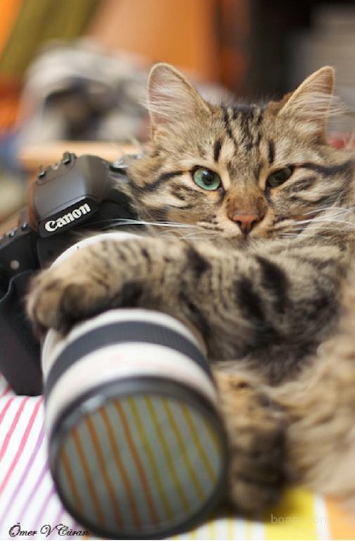 Школа фотографии в Одессе. Доступно и эффективно Звоните.
