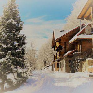 Что ожидать от зимнего отдыха в Карпатах с детьми?