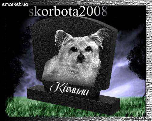 Эвтаназия ( усыпление) животных О9З-408-09-36