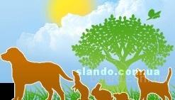 Гуманитарная ветеринарная помощь, ветеринар Харьков 093-408-09-36