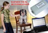 Кардиограф Ветеринарный 7 канальный «Кардиостиль - Ветеринарный»