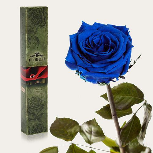 Долгосвежие розы Florich стоят без воды до 5 лет