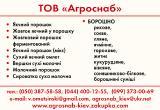 яичный порошок купить в Украине