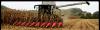 Уборка урожая Чернигов, услуги комбайнов в Чернигове, аренда комбайна