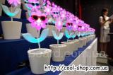 Танцующий цветок Flower Rock, купить подарок на 8 марта, танцующий цветок с улыбкой на лице, танцующий цветок flip flap, светильник