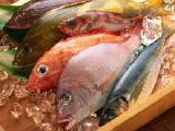 продаю свежемороженную рыбу оптом