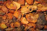 продам сушеные яблоки и груши на дыму в больших количествах цена 6 грн\ кг