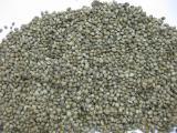 конопля техническая семена для прикормки и на масло