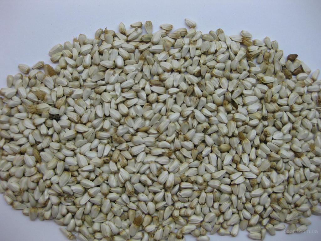 сафлор семена