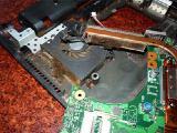 Чистка ноутбука (нетбука) от пыли в Житомире марок Asus HP Acer LG Lenovo Sony Samsung Dell.