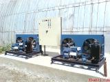 Шоковая заморозка, овощехранилища, камеры хранения, чиллер