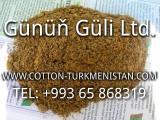 Шрот хлопковый, тостированный - Sell Cotton Meal Toasted