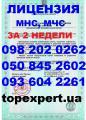 Лицензия МНС, МЧС, Пожарная лицензия, Противопожарная лицензия