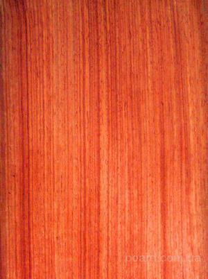Тропическая древесина Падук