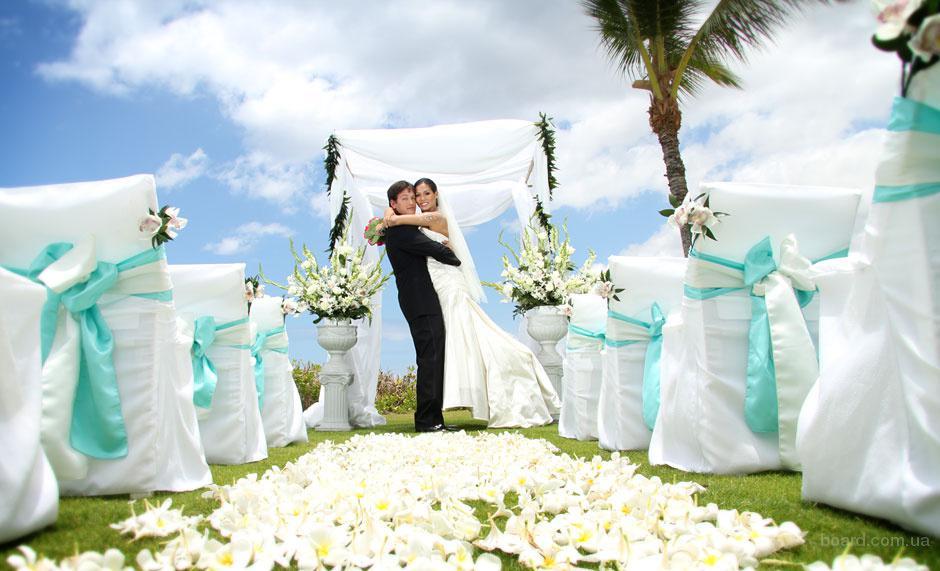 Выездная церемония. Выездная регистрация брака. Ведущая выездной