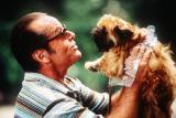 Собачки из фильма «Лучше не бывает». Гриффоны