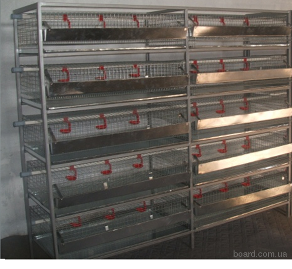 клетка для перепилов, клетки для перепилов на 400-450 голов