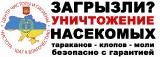 уничтожение тараканов, клопов, клещей в Днепропетрповске