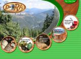 Станки для деревообработки от производителя