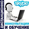 Консультирование и обучение руководителей по Skype