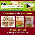 Купуємо висівки пшеничні Покупаем отруби пшеничные
