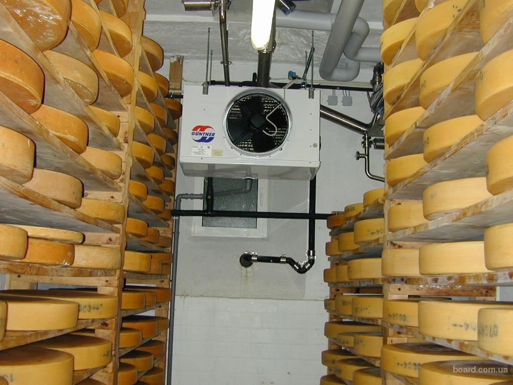 Камера созревания сыра