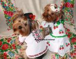 Вышиваночки для собак