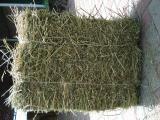 Продам люцерну в тюках урожай 2014г