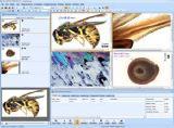 Программа BioAnalyze Advanced для анализа изображений, которые получены при помощи микроскопа