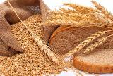 Закупка зерновых